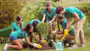 """Empowered by Nature"" – a short-term group volunteering project in Hungary"